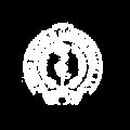 Logo CMG